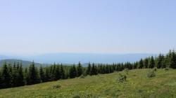 Planina Cemernik