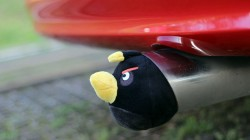 Honda Civic Coupe Angry Bird